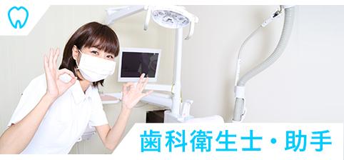 歯科衛生士・助手